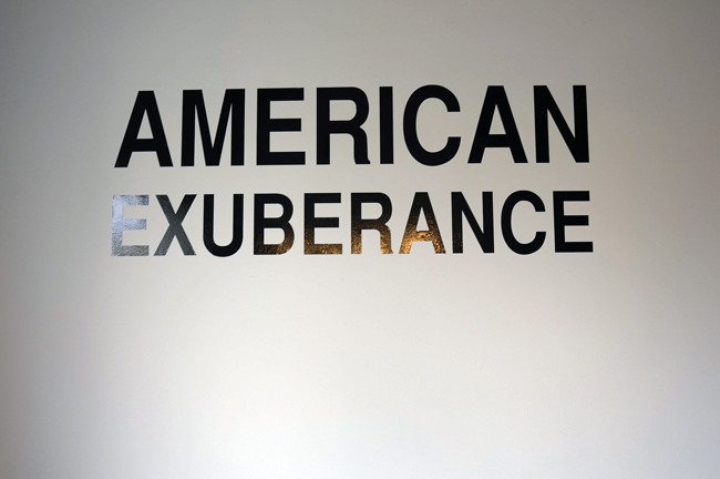 """Not a good title for the Rubell's show in my view, there's nothing to be exuberant about these days, """"American Temperament"""" would have been closer to the zeitgeist."""