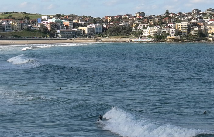 check out the surfers