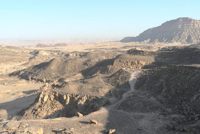 I love the desert