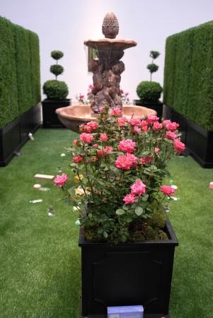 beautiful indoor garden