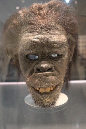 The original ape mask
