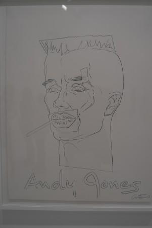 An Andy Warhol/Grace Jones combo...that's like Cheese Fries!!!